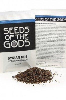 Syrian Rue (Peganum Harmala), 10 grammes