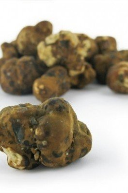 Magic Truffles Mexicana, 15 grammes