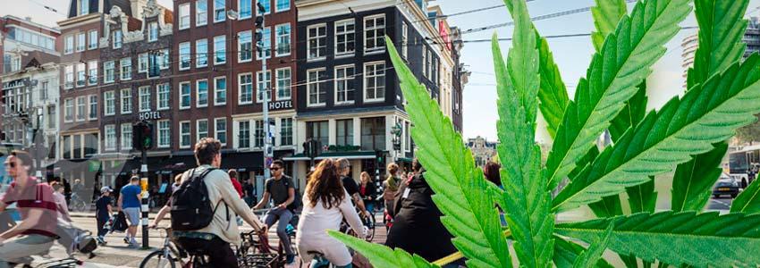 Florissante Industrie Du Tourisme À Amsterdam