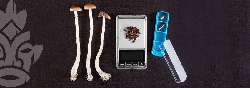 Le micro-dosage des champignons