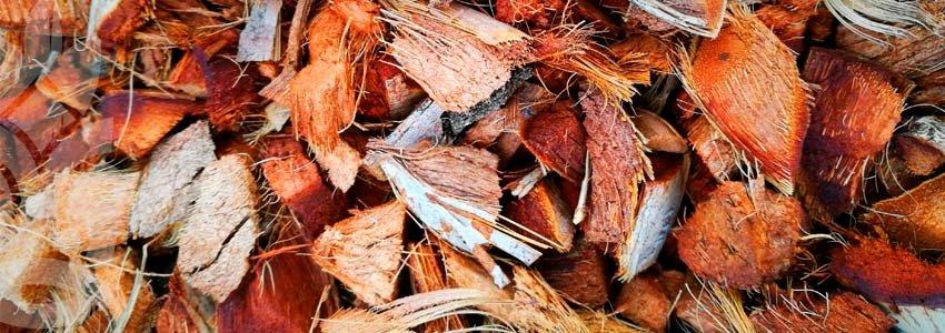 morceaux de fibre de cosse déshydratés