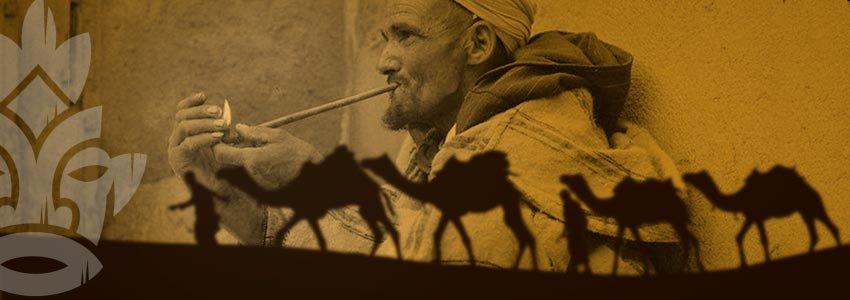 Pipe Sebsi Maroc