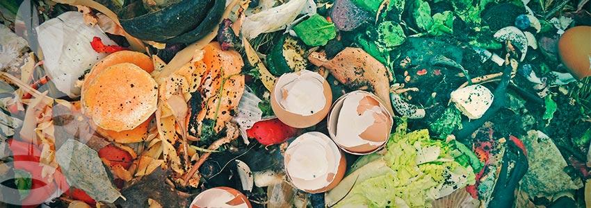 Comment Faire Un Tas De Compost