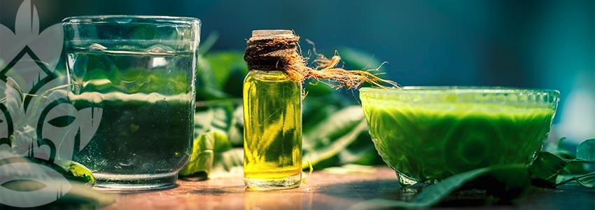 L'huile De Neem Et Ses Divers Emplois