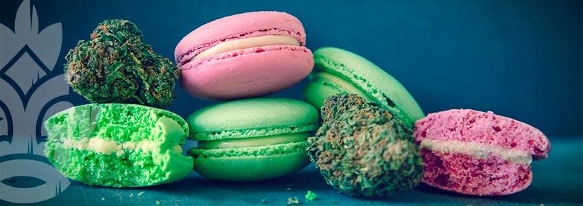 Comment Dois-je Consommer Ma Marijuana Médicale ?