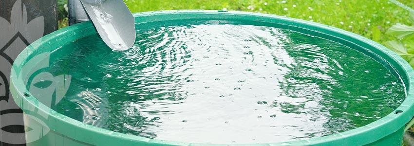 Utilisez L'eau De Pluie