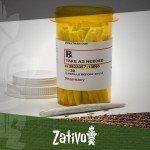 Un Regard sur le Cannabis comme Anti-Douleur