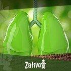 Fumer Du Cannabis Et Les Effets Sur Les Poumons