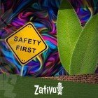 Salvia Divinorium – 10 Conseils Pour Tripper En Sécurité