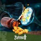 Inhibiteurs de Monoamine Oxydase (IMAOs) - Avertissement