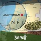 Les Coffee Shops D'Amsterdam: Conseils Pour Une Première Fois