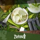 10 Façons d'Exploiter Au Mieux Ses Résidus De Taille De Cannabis