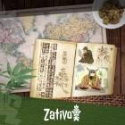 L'origine et l'histoire du cannabis