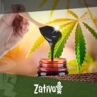 Améliorez la santé de vos plants de cannabis avec de la mélasse