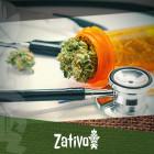 Comprendre Ce Qu'est La Marijuana Médicale