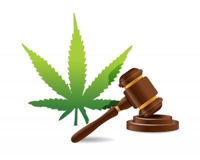 Le Gouvernement Britannique Poussé À Essayer La Régulation Du Cannabis