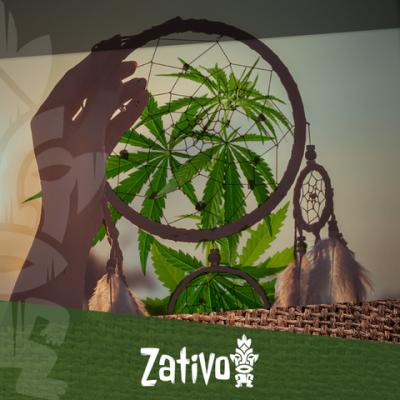 Comment le Cannabis affecte votre sommeil?