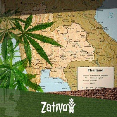 Les Origines des Variétés Thaïes