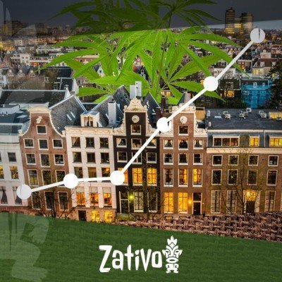 L'Avènement Des Coffee-Shops À Amsterdam