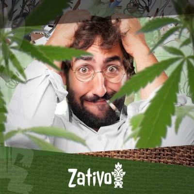 Top 7 Des Variétés De Cannabis Pour Soulager Du Stress