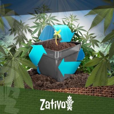Comment Recycler Votre Terre De Culture De Cannabis
