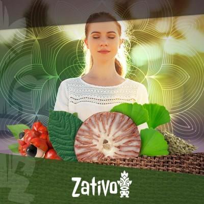 7 énergisants naturels pour revigorer le corps et l'esprit
