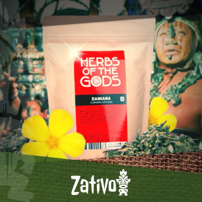 Damiana : l'herbe aphrodisiaque et relaxante des Mayas
