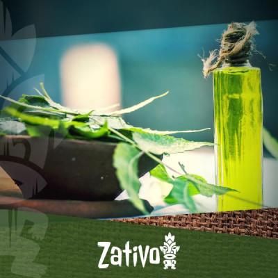 L'huile de neem : son origine, ses effets et comment en confectionner.