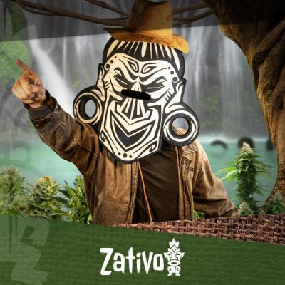 Trouvez Vos Variétés De Cannabis Favorites Grace Au Cannabis Seedfinder