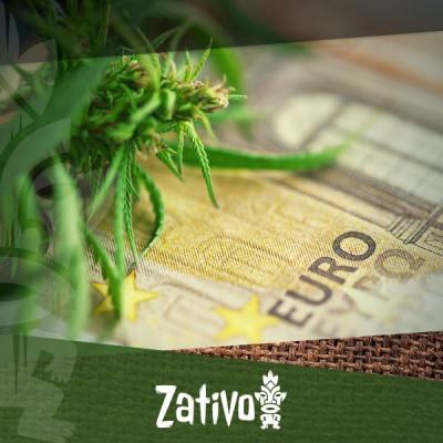 Comment cultiver du cannabis avec un petit budget